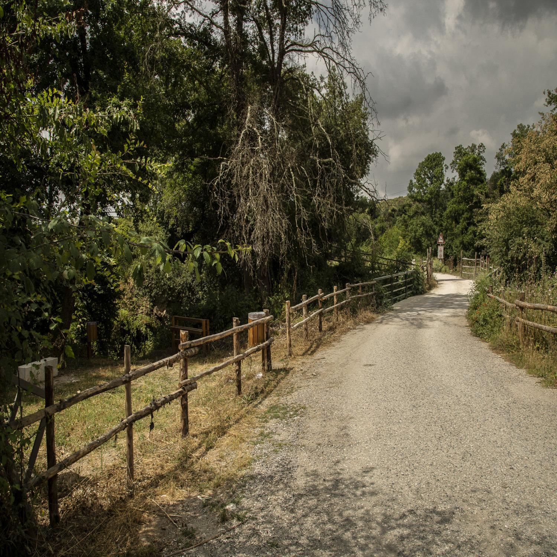 La via Francigena - Percorsi di Andrea De Ieso